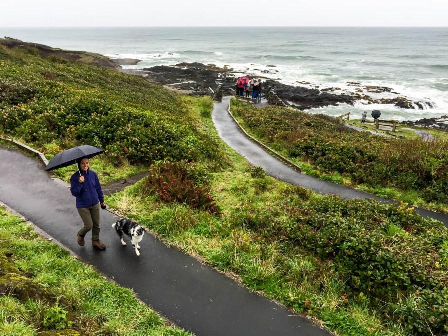 Oregon Coast Cape Perpetua - 0001