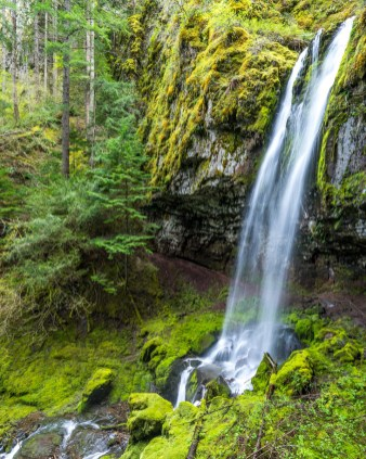 Angel Falls Hike - 0011