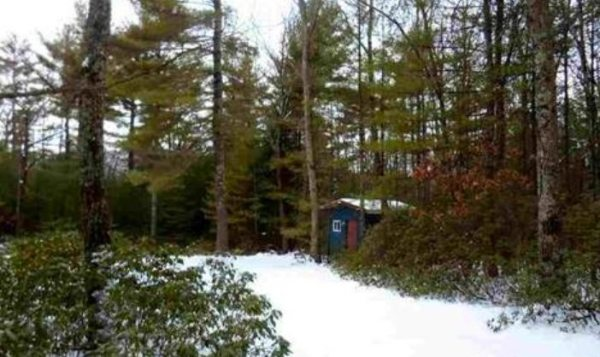 140-sq-ft-tiny-cabin-with-land-for-sale-0004