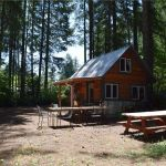 180 Sq. Ft. Tiny Cabin w Land For Sale in Hoodsport, WA 002