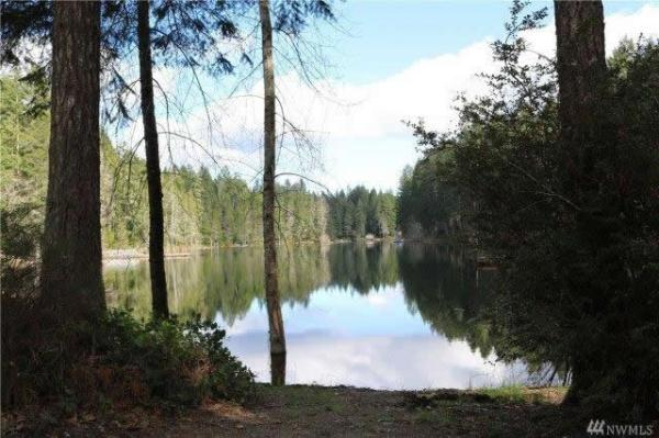 200-sqft-tiny-cabin-on-.41-acres-for-sale-tahuya-012