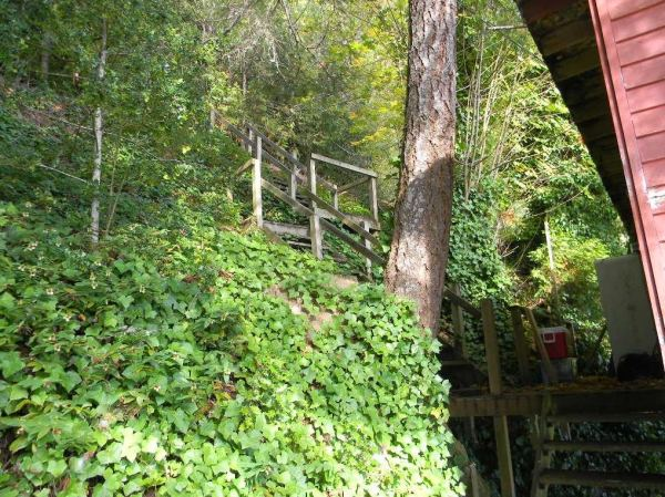 288-sq-ft-waterfront-tiny-cabin-for-sale-003