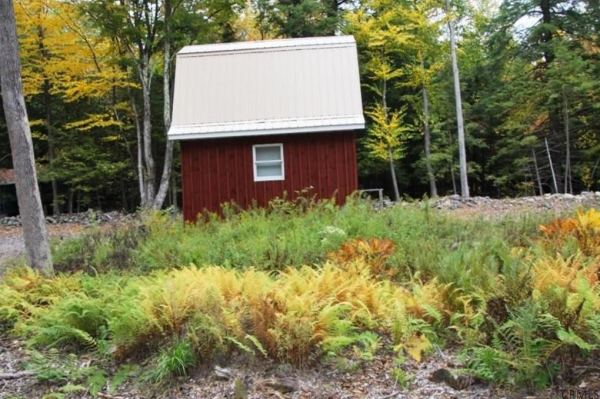 400-sq-ft-tiny-cabin-on-1-acre-for-sale-008