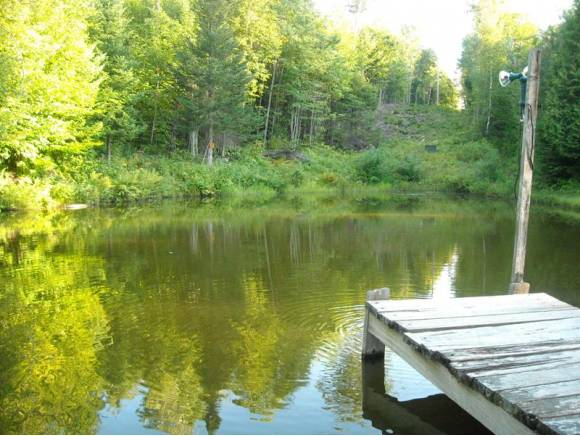 528 Sq. Ft. Tiny Cabin on 7 Acres For Sale in Canaan, NH
