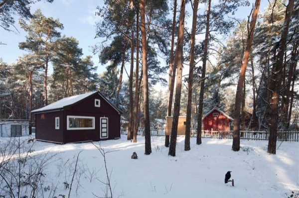 667-Sq-Ft-Cabin-Forest-001