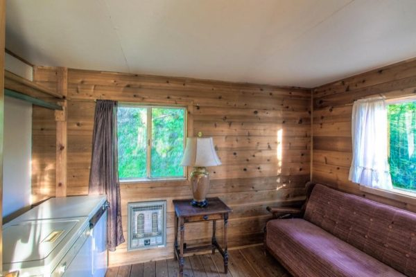 720-sq-ft-rustic-cabin-in-the-mountains-for-sale-003