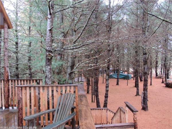 90k-tiny-cabin-on-23-acres-for-sale-016