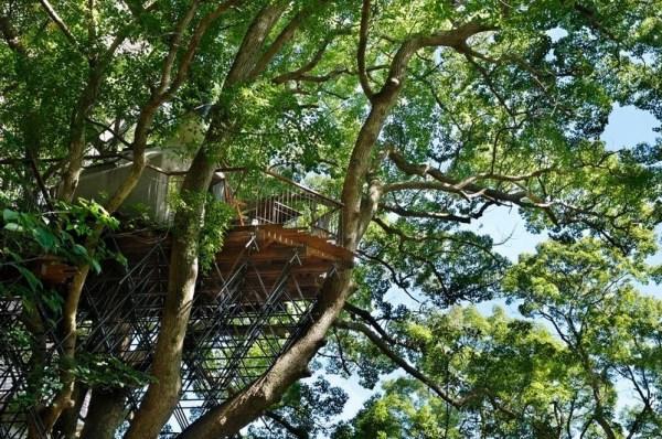 Bird's Nest Treehouse by Hiroshi Nakamura 007