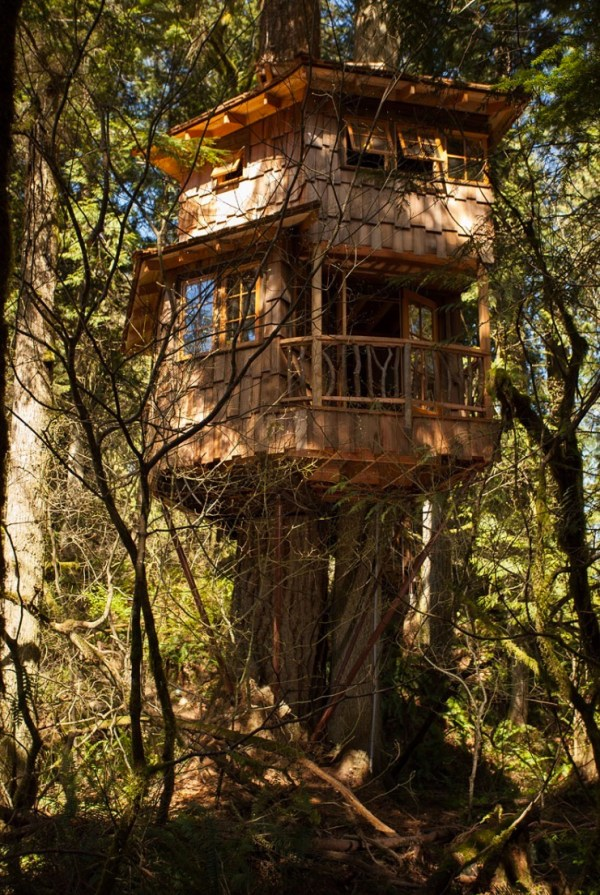 Burl Treehouse at TreeHouse Point 006