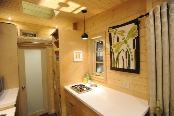 Contemporary Dragonfly Tiny House For Sale 006