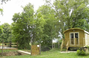 252 Sq. Ft. Gypsy Cabin