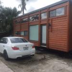 Miami Hurricane
