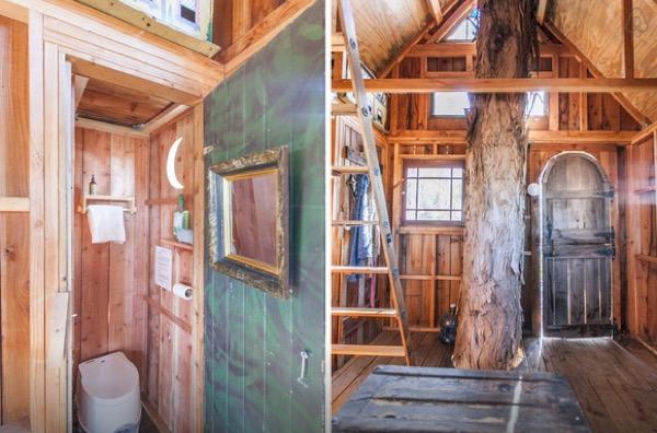 Multi-Level Treehouse in 110 ft. Eucalyptus Tree-008