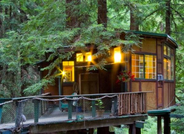 Redwood Treehouse 008