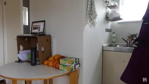 Raw Food Livin's Swedish Tiny House