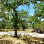 Tiny House Community in Wimberley, Texas 002