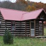 Tiny Log Cabin 001