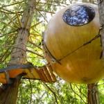Tiny Tree House Sphere Shelter Tour – Exploring Alternatives 1