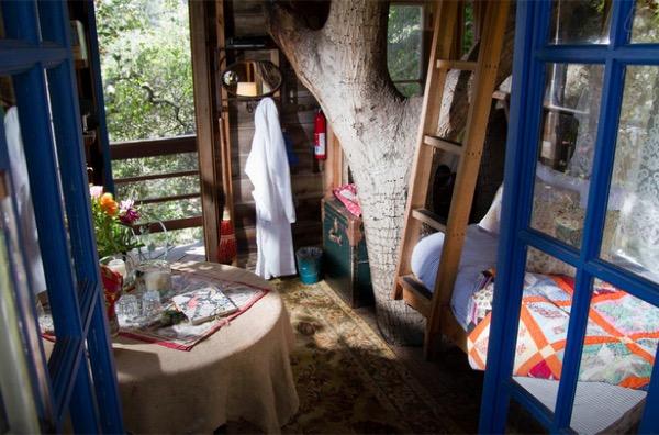 Tiny-Treehouse-Overlooking-San-Francisco-Bay-004