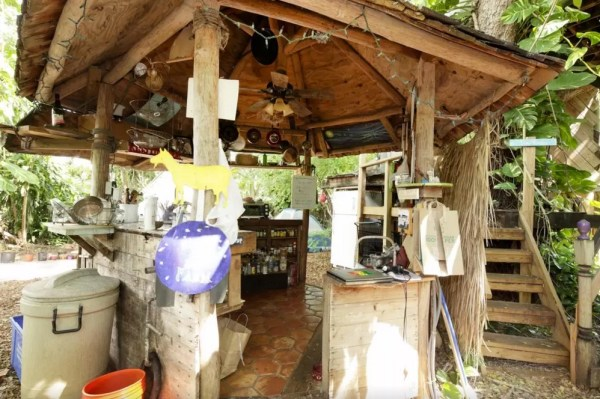 Treehouse Micro Cabin on a Permaculture Farm 006