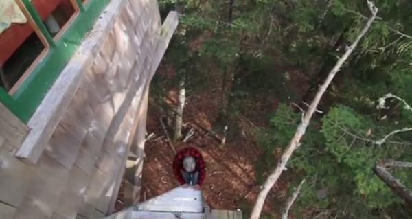 Barron Harringtons Treehouse on SpacesTV