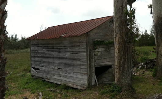 Old Beat Up Shed Still Standing