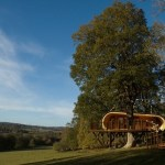 Eco Perch Treehouse Tiny Cabin at Blue Forest