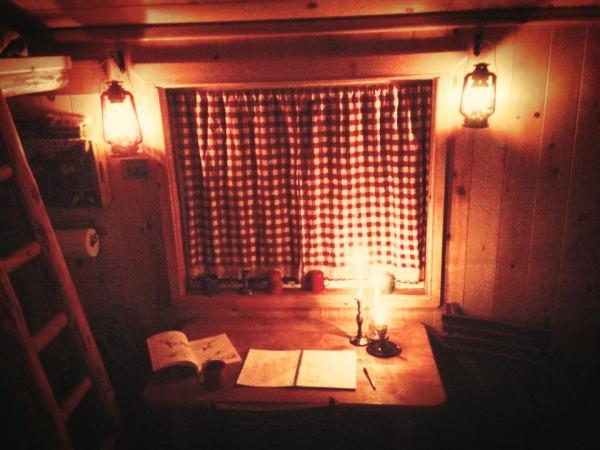 bogdan-tiny-cabin-in-the-woods-5