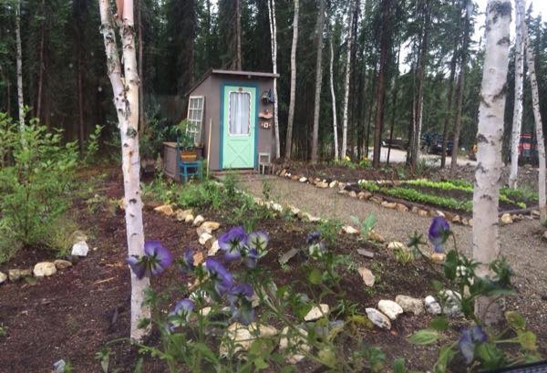 couples-diy-simple-living-tiny-house-story-in-alaska-006