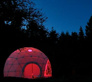 dome-garden-night