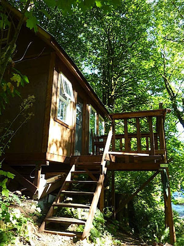 Entrance to Tiny Cabin by the River