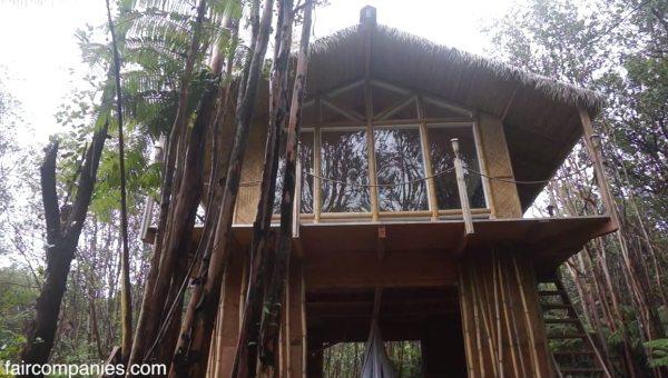 kristie-wolfes-hawaii-off-grid-treehouse-cabin-02