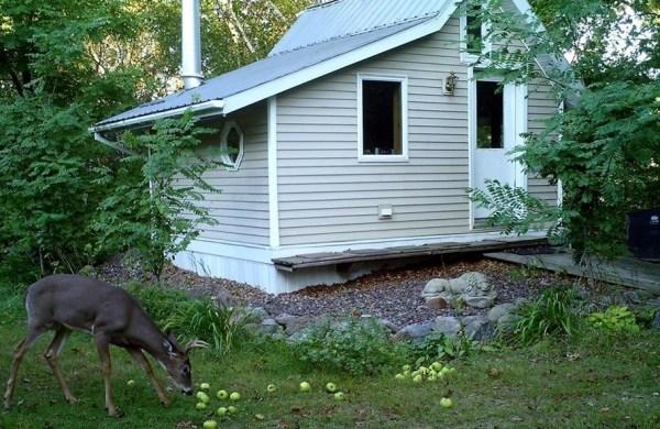 little-cabin-017