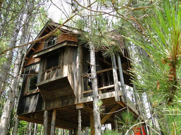 lynn-knowltons-tiny-tree-fort-cabin-0011