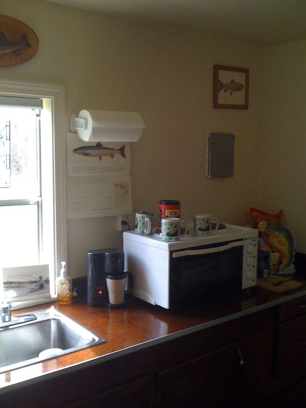mans-diy-tiny-cabin-for-affordable-living-02