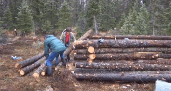 pioneer-log-cabin-building-02