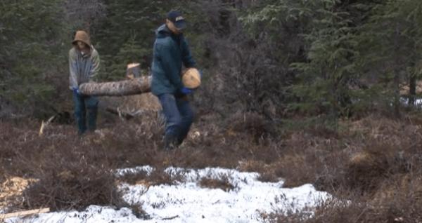 pioneer-log-cabin-building-06