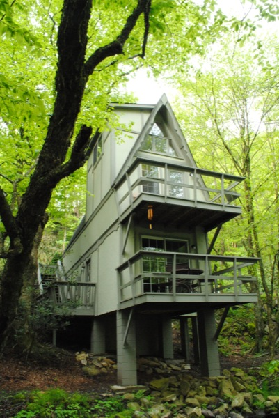 riverwood-700-sf-a-frame-inspired-cabin-in-nc-002