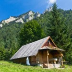 Things to Consider Before Moving into a Tiny House or Cabin in the Mountains or Woods