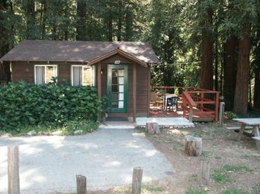 tiny-cabin-11