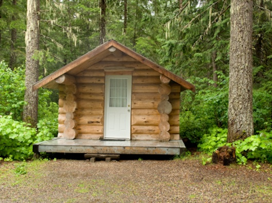 Tiny Log Cabin in the Woods