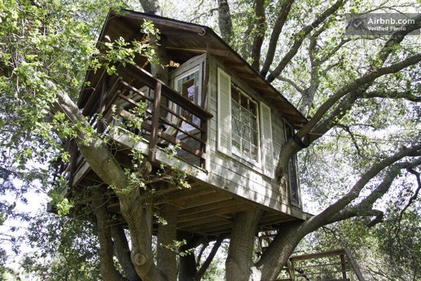 Tree House with a Porch