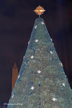 national-xmas-tree-and-the-needle-ud92