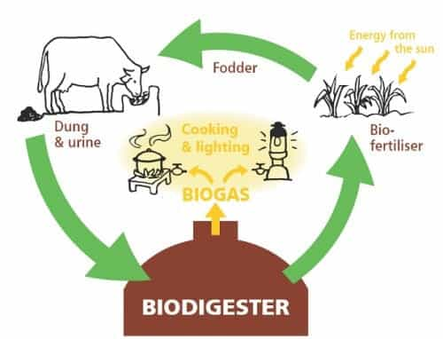 How A Biogas Digester Works