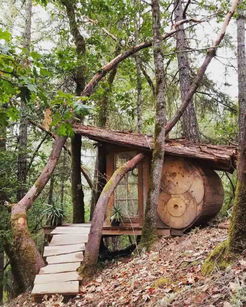 tiny home built with reclaimed materials
