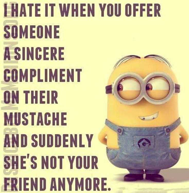 56 Minions Quotes to Reignite Your Love 12