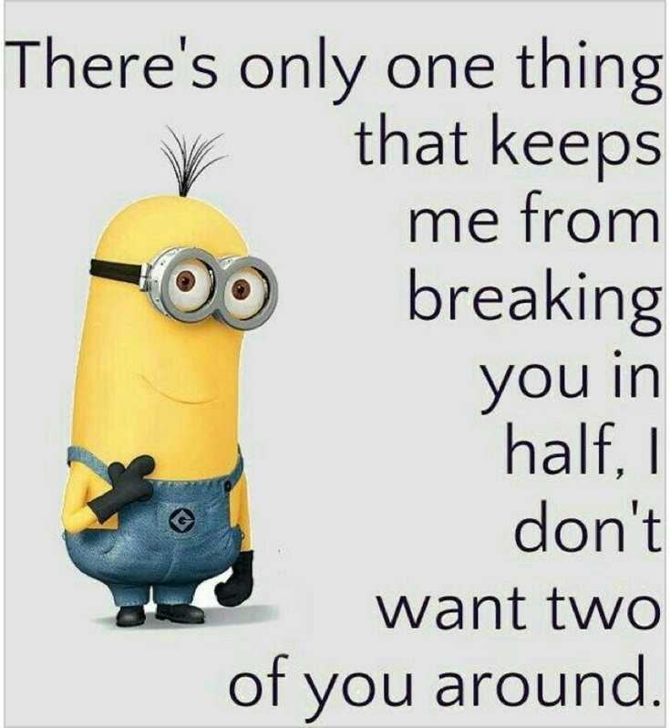 56 Minions Quotes to Reignite Your Love 4