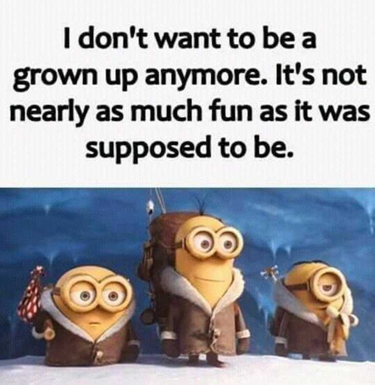 56 Minions Quotes to Reignite Your Love 42