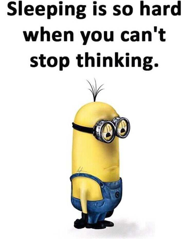 56 Minions Quotes to Reignite Your Love 49
