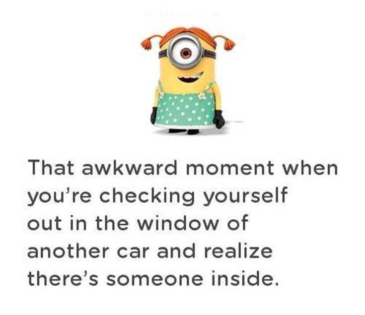 56 Minions Quotes to Reignite Your Love 6